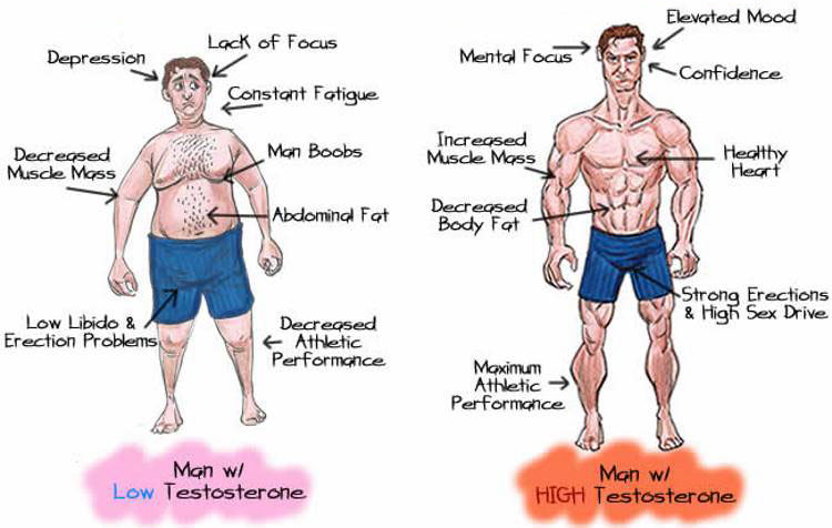 Testosterone boosting benefits