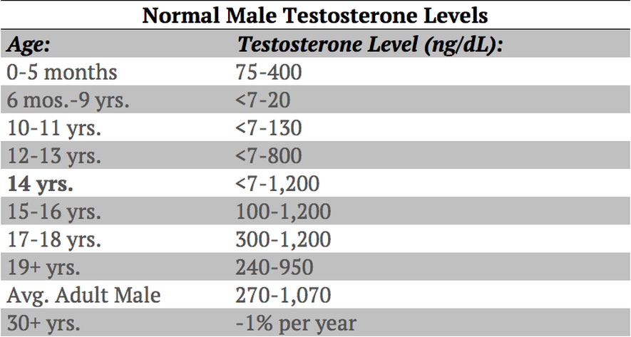 Can Testosterone Help You Build More Muscle