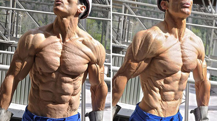 Shredded Ripped Physique