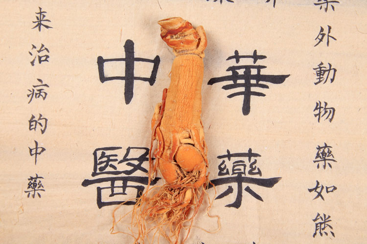 Ginseng is a traditional chinese medicine