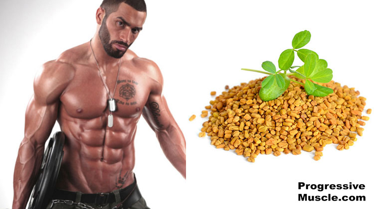 Fenugreek & testosterone