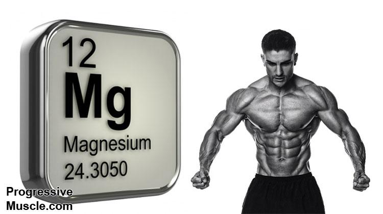 Magnesium & testosterone