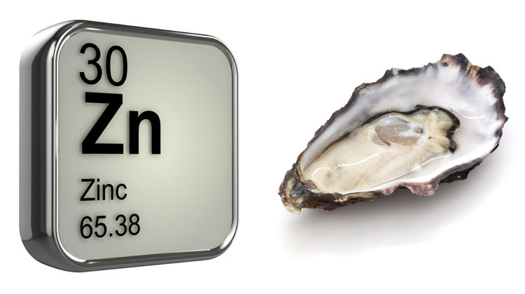 Oysters & Zinc