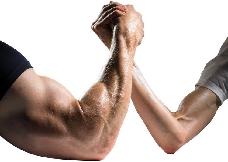 Arm muscle mass