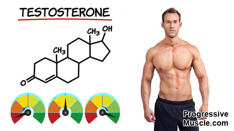 Testosterone levels and sex drive in men